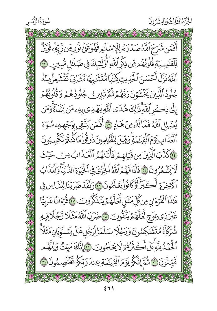 39. سورة الزمر - Al Zumar مصورة من المصحف الشريف 0464