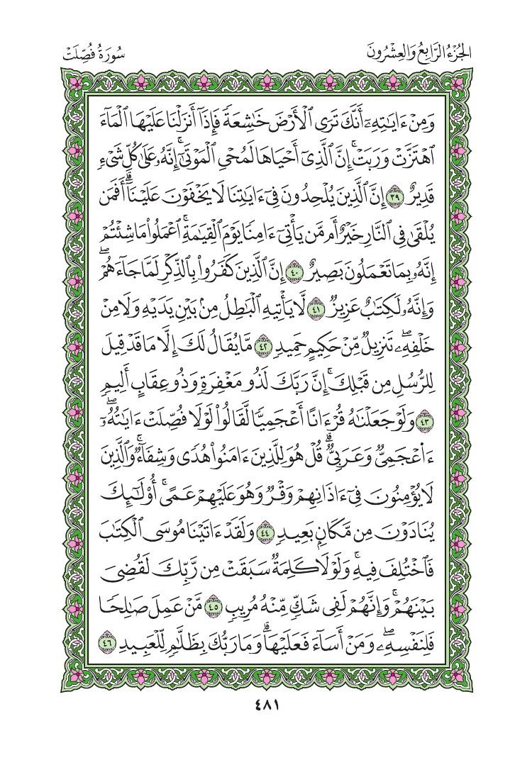 41. سورة فصلت - Fussilat مصورة من المصحف الشريف 0484